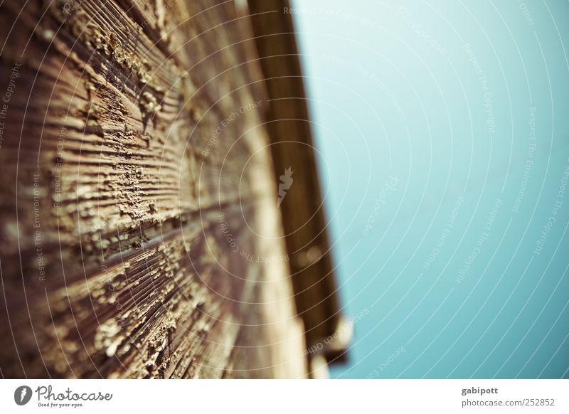 Holzwurmperspektive Wolkenloser Himmel Schönes Wetter Haus Hütte Ruine Gebäude Mauer Wand Fassade außergewöhnlich historisch kaputt trashig blau braun