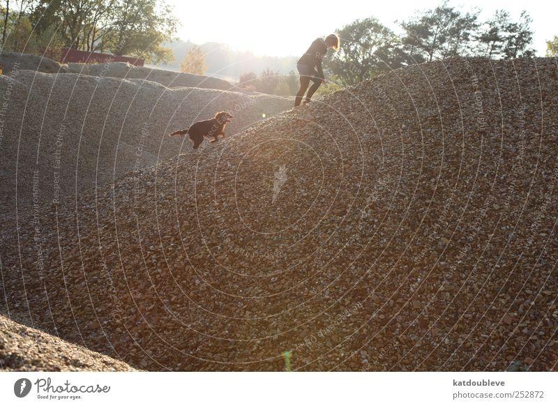 la balade Tier Haustier Hund 1 Stein Sand beobachten Bewegung entdecken gehen Ferien & Urlaub & Reisen Blick Spielen toben frei Zusammensein kalt grau