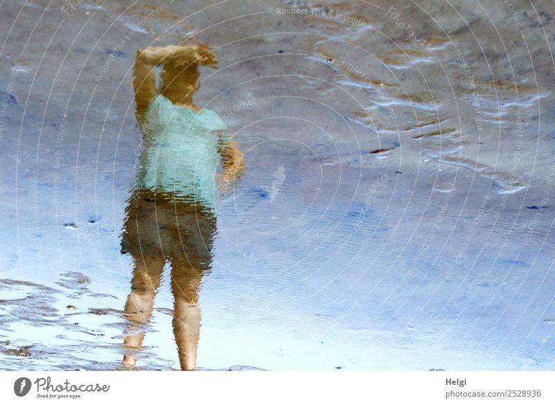 Spiegelbild einer Frau, die im Watt steht und nach oben schaut Mensch feminin Erwachsene 1 30-45 Jahre Umwelt Natur Wasser Sommer Schönes Wetter Küste Nordsee