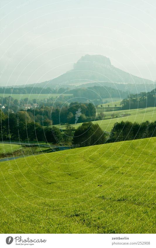 Lilienstein am Vormittag Freizeit & Hobby Ferien & Urlaub & Reisen Tourismus Ausflug Abenteuer Ferne Freiheit Berge u. Gebirge wandern Klettern Bergsteigen