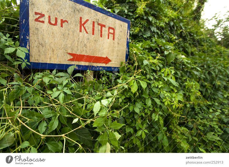 zur KITA Freude Holz Arbeit & Erwerbstätigkeit Park Schilder & Markierungen Schriftzeichen Hinweisschild Zeichen Pfeil Richtung Kindergarten Orientierung