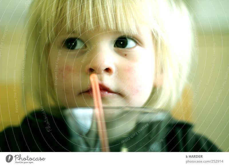 bloß nicht ablenken lassen Getränk trinken Mensch Kleinkind Mädchen 1 1-3 Jahre Denken schön mehrfarbig gelb Durst Farbfoto Innenaufnahme Tag Unschärfe
