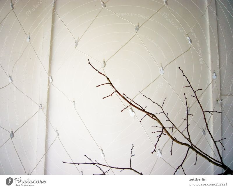 Liebevolle Dekoration Stil Design Freizeit & Hobby Häusliches Leben Wohnung Haus Einfamilienhaus Bauwerk Gebäude Mauer Wand hässlich wallroth Lichterkette Ast