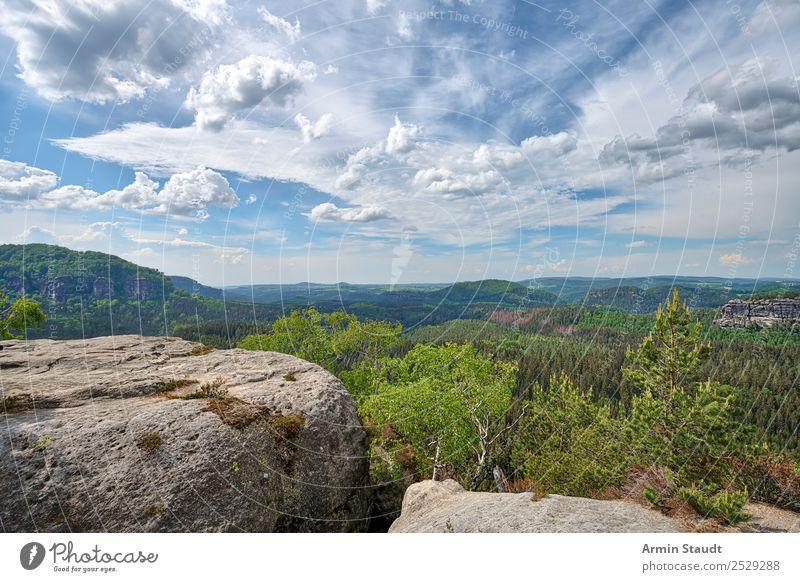 Elbsandsteingebirge Himmel Natur Ferien & Urlaub & Reisen Landschaft Wolken Wald Ferne Berge u. Gebirge Frühling Tourismus Freiheit außergewöhnlich Stimmung