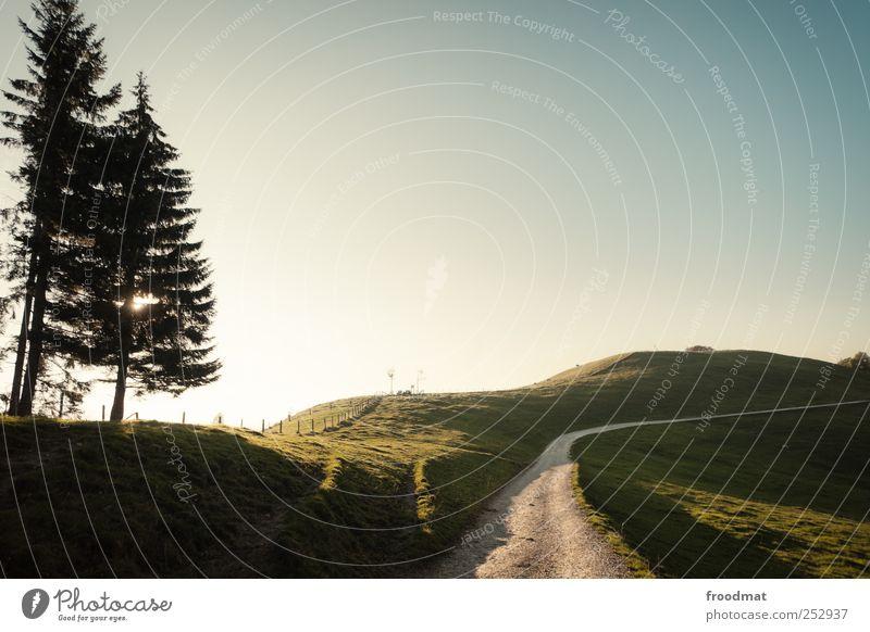 weg Natur Baum Sommer Einsamkeit Ferne Erholung Wiese Herbst Umwelt Berge u. Gebirge Landschaft Wege & Pfade Freizeit & Hobby Ausflug wandern Abenteuer