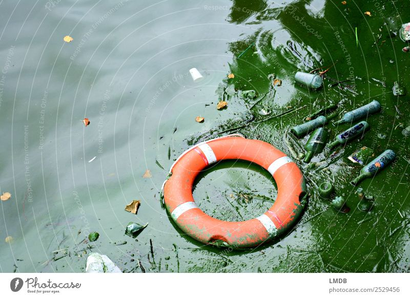 Eine Rettung vor dem (Plastik-)Müll? Stadt Umwelt See dreckig Glas Kunststoff Verfall Stress Umweltschutz Flasche Teich Ekel Kunststoffverpackung Dose