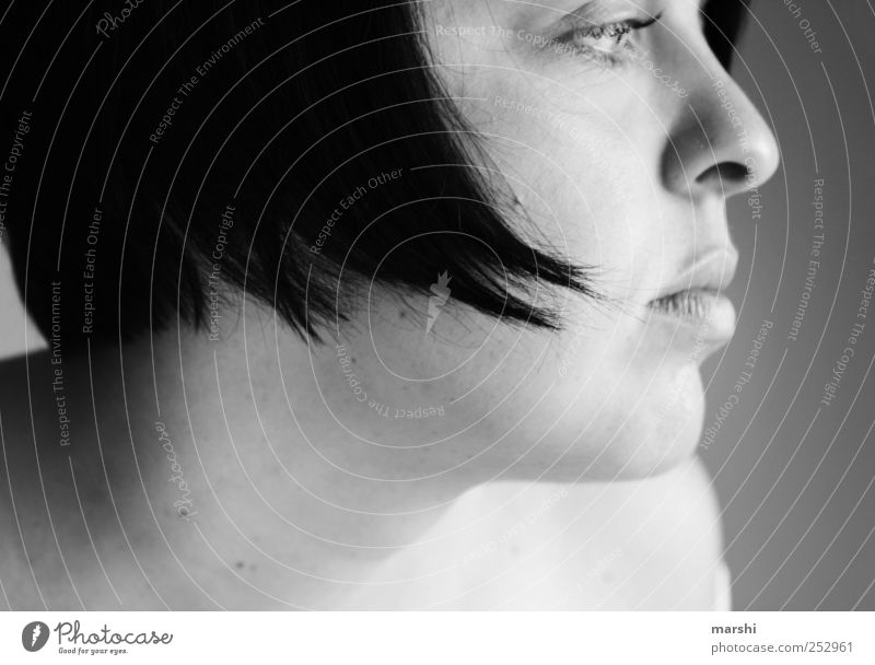 Langhals Mensch feminin Frau Erwachsene Kopf Haare & Frisuren 1 schwarzhaarig schön Nase Profil kurzhaarig Blick verträumt Schwarzweißfoto Innenaufnahme