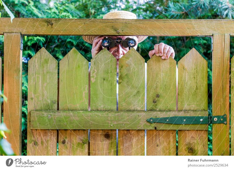 Ein neugieriger Nachbar schaut über einen Gartenzaun. Erblickt durch ein Fernglas. Mensch maskulin Mann Erwachsene Männlicher Senior Kopf 1 60 und älter Natur