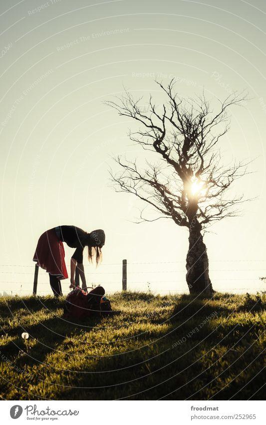 tideland Mensch Frau Natur Jugendliche Baum Sonne Einsamkeit Erwachsene Erholung Wiese feminin Herbst Gras Junge Frau Wege & Pfade träumen