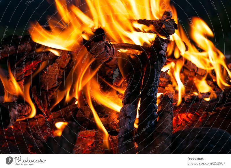 Burnout Freizeit & Hobby Ferien & Urlaub & Reisen Abenteuer Feuer Erholung heiß Wärme hypnotisch Lagerfeuerstimmung Brandasche Glut Flamme Erschöpfung glühend