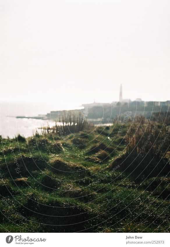 iffy portland Ferien & Urlaub & Reisen Meer Strand Ferne Gras Freiheit Horizont Nebel Sträucher Insel Zukunft Abenteuer Hoffnung Unendlichkeit Bucht Sehnsucht