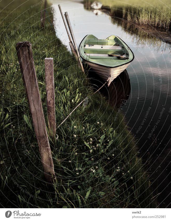 Morgens am Kanal Natur Wasser Pflanze ruhig Umwelt Landschaft Holz Gras Zufriedenheit liegen Verkehr Klima Idylle Frieden Gelassenheit Verkehrswege