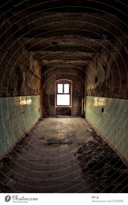 Don't go any further alt grün dunkel Fenster Architektur Gebäude braun Deutschland Raum dreckig Europa Bauwerk verfallen gruselig Fliesen u. Kacheln