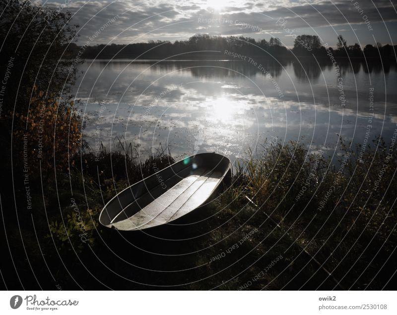 Ausgebootet Umwelt Natur Landschaft Pflanze Wasser Himmel Wolken Horizont Frühling Schönes Wetter Baum Gras Sträucher Seeufer Lausitz Deutschland Fischerboot