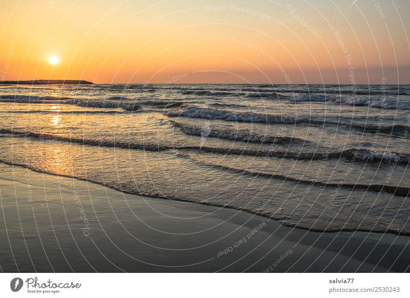 Morgenstimmung Ferien & Urlaub & Reisen Tourismus Ferne Sommerurlaub Strand Meer Landschaft Himmel Wolkenloser Himmel Horizont Sonne Sonnenaufgang