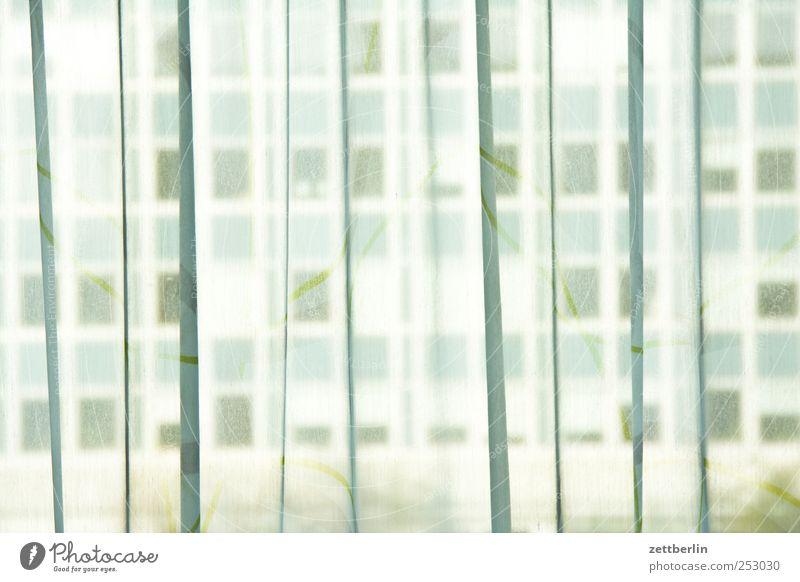 Gardine vor Neubau Stil Berge u. Gebirge Häusliches Leben Wohnung Klettern Bergsteigen Natur Landschaft Felsen Mauer Wand Fenster Wege & Pfade Dresden wallroth