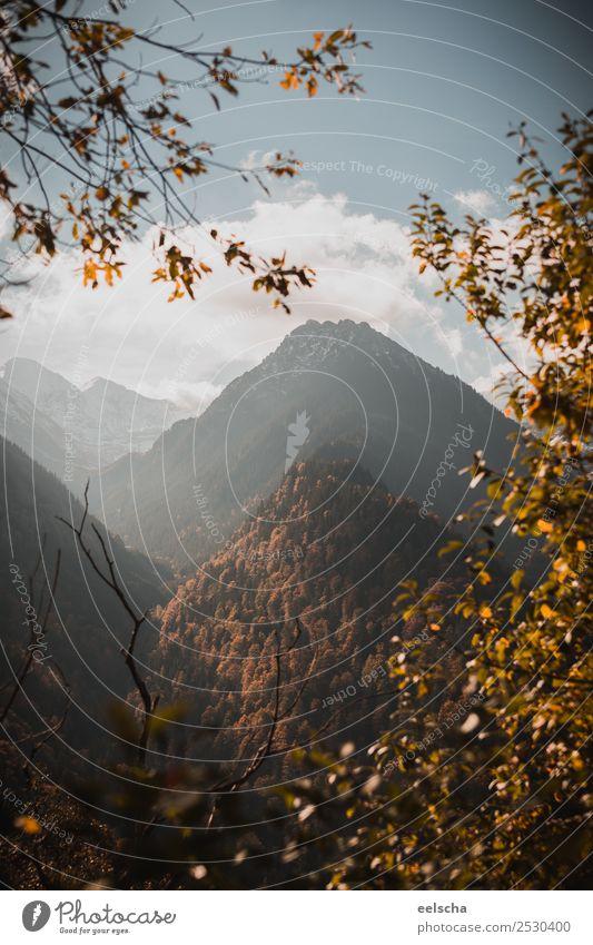 Gebirgslandschaft Natur Landschaft Luft Himmel Wolken Sonnenlicht Herbst Schönes Wetter Schnee Baum Sträucher Blatt Grünpflanze Wald Hügel Felsen