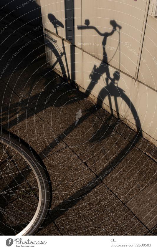 rad Schönes Wetter Verkehr Verkehrsmittel Verkehrswege Fahrradfahren Straße Wege & Pfade Bürgersteig ästhetisch rund Mobilität Sport Fahrradklingel