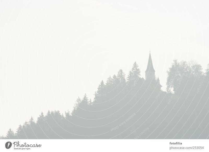 Allerheiligen Baum Wald Landschaft Nebel Kirche Österreich schlechtes Wetter Kirchturm