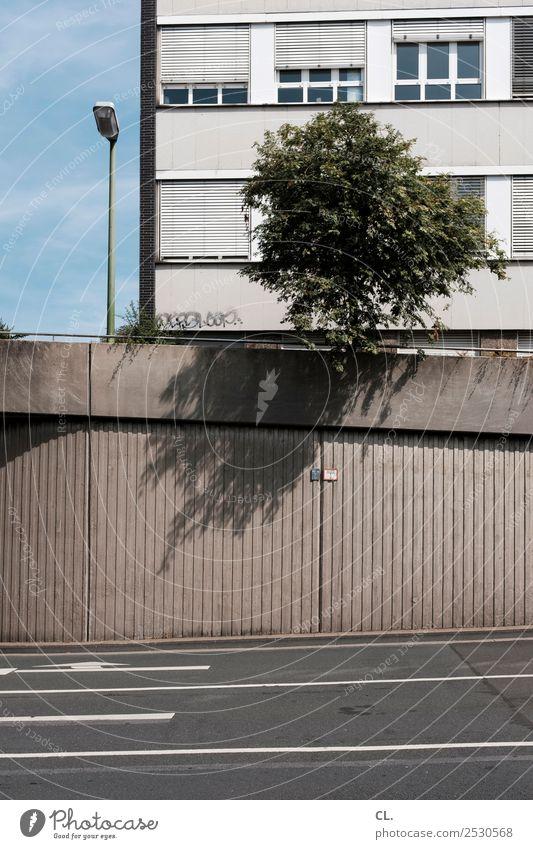 natur urban Himmel Baum Stadt Menschenleer Haus Mauer Wand Fassade Verkehr Verkehrswege Straßenverkehr Wege & Pfade Laterne Farbfoto Außenaufnahme Tag