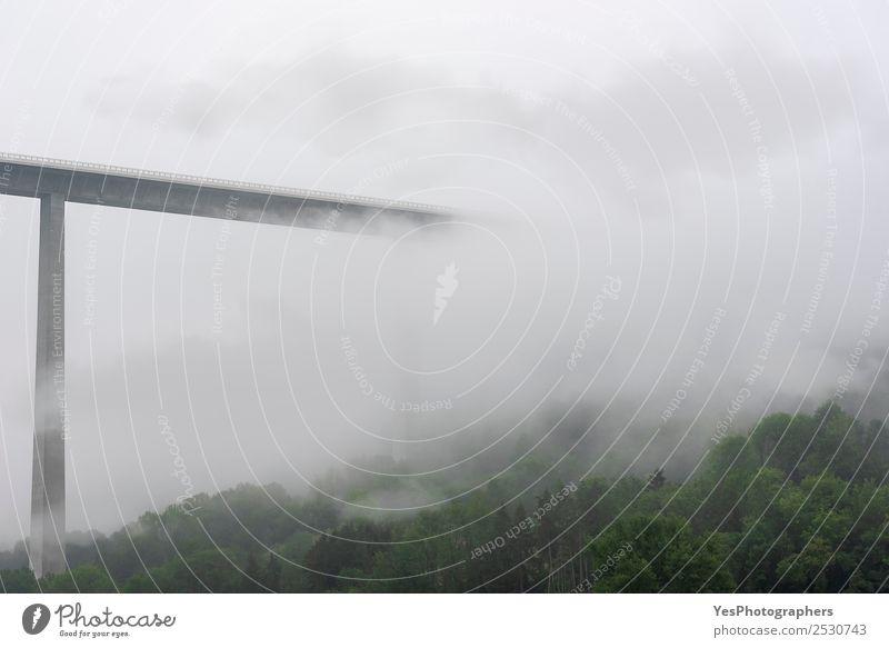 Hochmoderne Brücke, die in Nebel und Wolken verschwindet. Technik & Technologie Natur Landschaft schlechtes Wetter Wald Hügel Bauwerk Architektur Verkehr