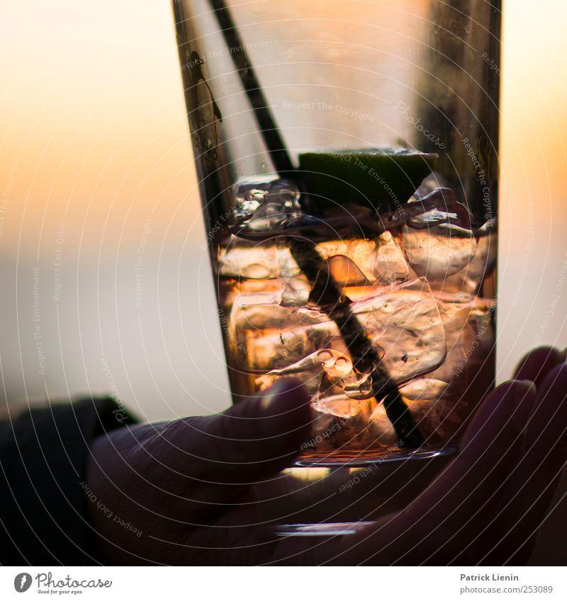 Have a break Getränk trinken Erfrischungsgetränk Alkohol Longdrink Cocktail Lifestyle elegant Stil Wellness harmonisch Wohlgefühl Zufriedenheit Freizeit & Hobby
