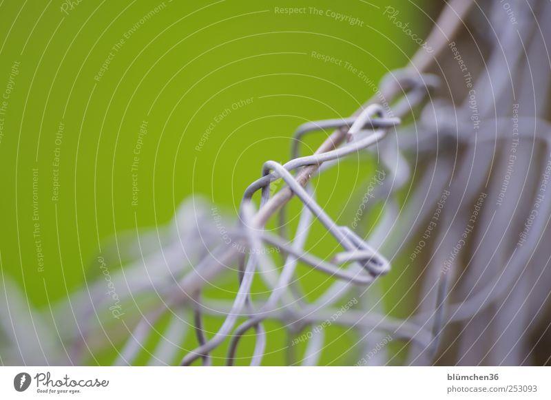 DrahtZaunMaschen Maschendrahtzaun Metall Knoten Netzwerk festhalten eckig grau grün Schutz Sicherheit Trennung Zusammenhalt Grenze Barriere chaotisch geflochten