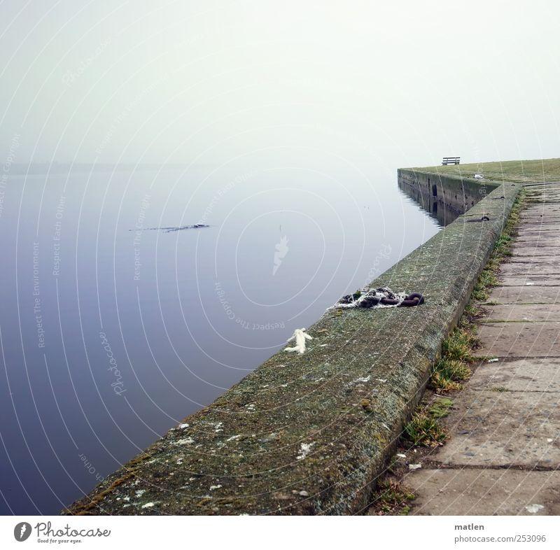 Moment Wasser blau Tier Landschaft Stein braun Nebel Beton Bank Jagd Stillleben Ostsee