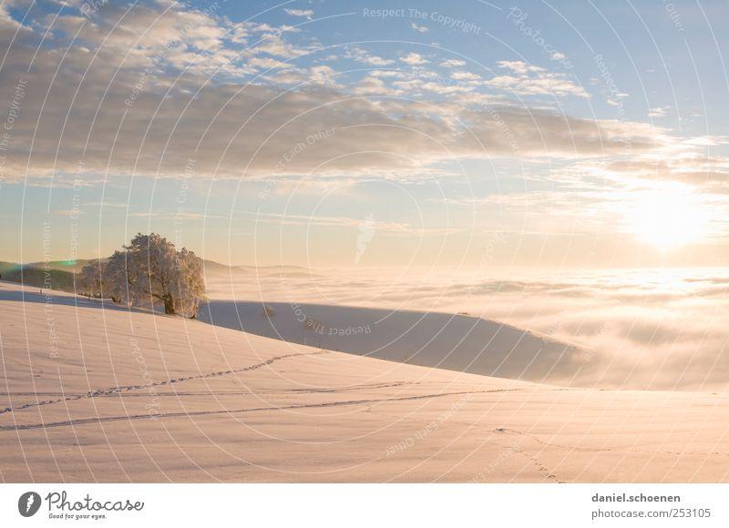 Pastellsonnenuntergang Himmel Natur blau weiß Sonne Ferien & Urlaub & Reisen Winter ruhig Ferne Schnee Freiheit Umwelt Berge u. Gebirge Landschaft hell Eis