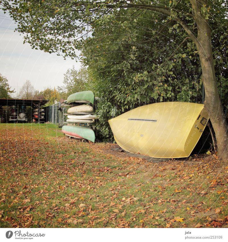 saisonende Umwelt Natur Himmel Herbst Pflanze Baum Gras Sträucher Grünpflanze Wildpflanze Wiese Ruderboot Kanu braun gelb grün Ordnung aufbewahren Farbfoto