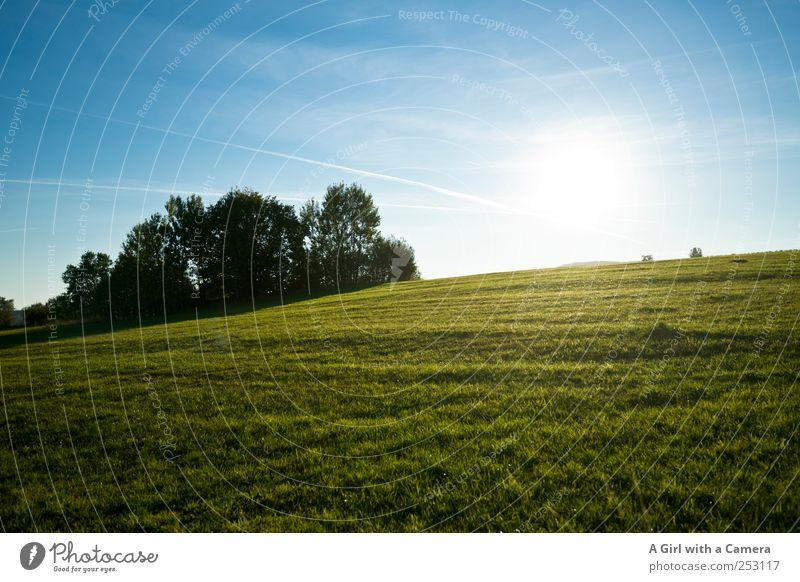Rhön Hügel Umwelt Natur Landschaft Pflanze Himmel Wolken Sommer Herbst Gras Wiese leuchten Freundlichkeit Fröhlichkeit gigantisch natürlich saftig