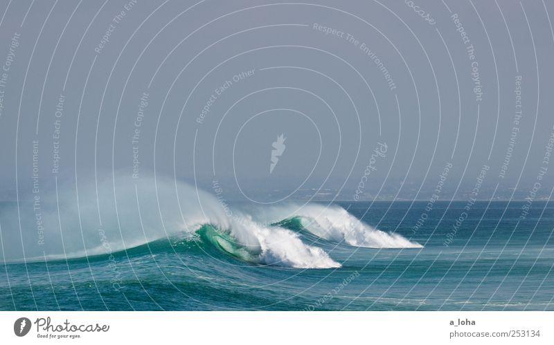 the power of the ocean Wassersport Umwelt Natur Urelemente Wolkenloser Himmel Horizont Sommer Schönes Wetter Wellen Küste Meer Linie Bewegung exotisch