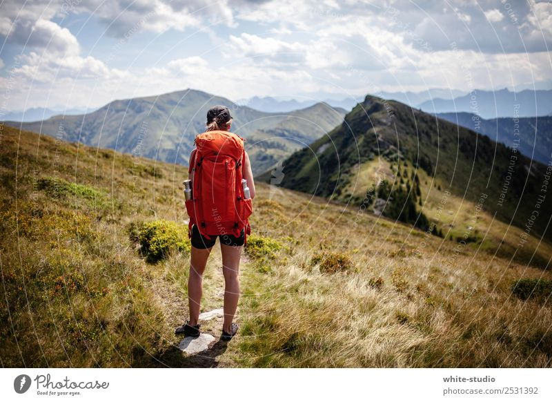 Der Weg ist das Ziel. Erholung Sommer Sommerurlaub Berge u. Gebirge wandern Frau Erwachsene Umwelt Natur Alpen Fitness Bergsteigen Gesundheitssport Sport