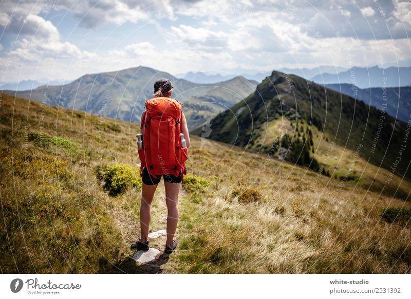 Der Weg ist das Ziel. Frau Natur Sommer Erholung Berge u. Gebirge Erwachsene Gesundheit Umwelt Wege & Pfade Sport Gesundheitswesen wandern Fitness Fußweg Alpen