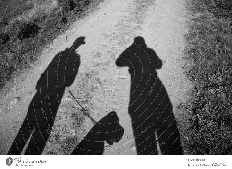 Way of shadow Mensch weiß Freude schwarz ruhig Umwelt Zeit Zufriedenheit natürlich maskulin frisch Abenteuer Fröhlichkeit stehen Sicherheit einzigartig