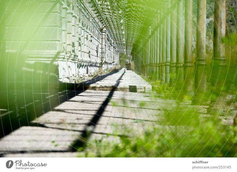 Estación de Canfranc alt grün gehen ästhetisch kaputt außergewöhnlich historisch Verfall bizarr Säule Bahnhof Nostalgie stagnierend Altbau beeindruckend Hemmungslosigkeit