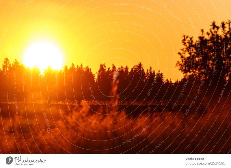 Himmel Natur Ferien & Urlaub & Reisen Sommer blau schön Sonne Landschaft weiß Baum rot ruhig Wald Berge u. Gebirge Straße gelb