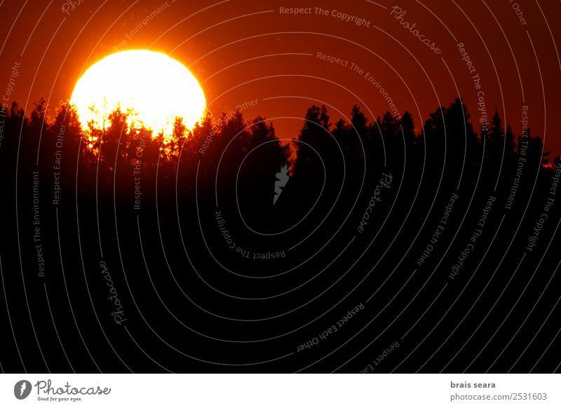 Himmel Natur Ferien & Urlaub & Reisen Sommer blau schön Sonne Landschaft weiß Baum rot Wald Berge u. Gebirge Straße gelb Umwelt