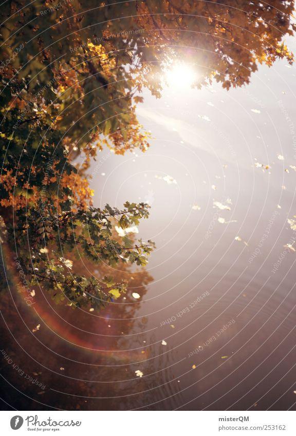 Herbsthimmel. Blatt ruhig See Kunst ästhetisch Perspektive Fluss Idylle Surrealismus Herbstlaub abgelegen Lichtbrechung herbstlich Lichtschein Herbstfärbung