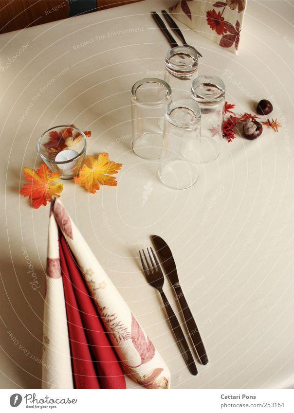 Für den Herbst gedeckt. Büffet Brunch Festessen Geschirr Glas Besteck Messer Gabel Blatt liegen stehen elegant hell Sauberkeit Stil Dekoration & Verzierung