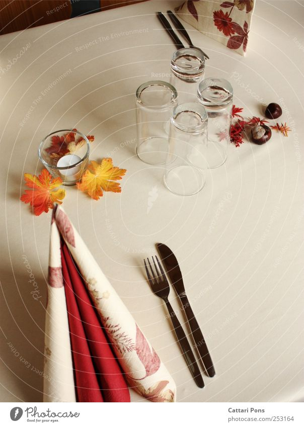 Für den Herbst gedeckt. rot Blatt Ernährung Stil hell Feste & Feiern Glas elegant liegen stehen Dekoration & Verzierung Sauberkeit Geschirr Festessen Gabel