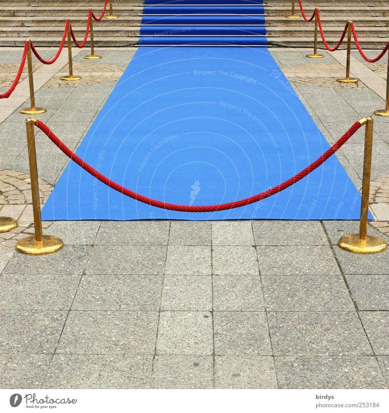 Der kleine Blaue blau rot Stil Kunst elegant warten gold Erfolg ästhetisch Lifestyle Kultur Show Sauberkeit Reichtum Zaun Eingang
