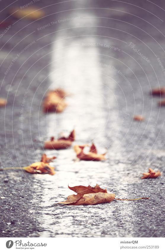 Straßenrand. Verkehrswege ästhetisch Herbst Herbstlaub herbstlich Herbstbeginn Herbstwind Seitenstreifen Fahrbahnmarkierung Asphalt Linie Streifen geradeaus