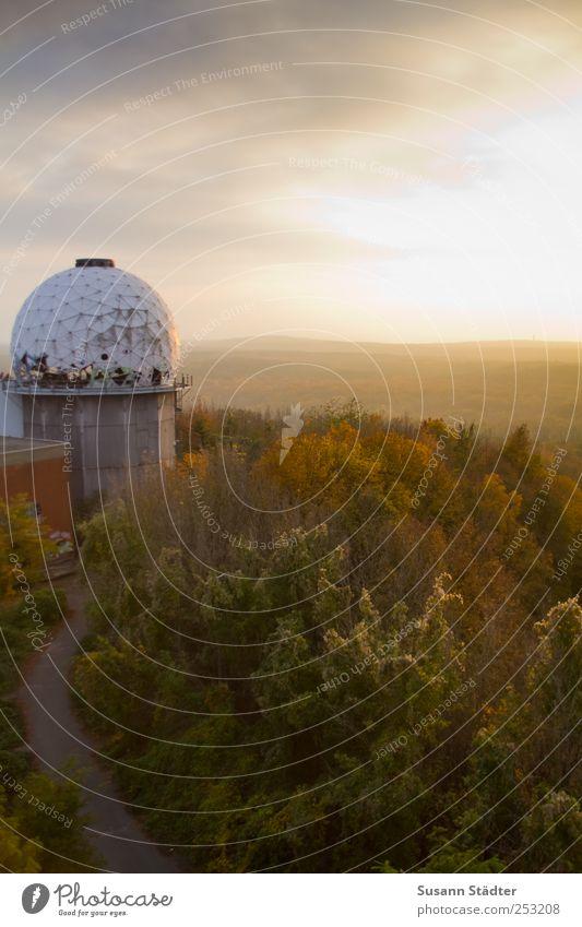 Herbst über Berlin Baum Wolken Wald Herbst Berlin Landschaft oben leuchten Kugel hören historisch Urwald Schönes Wetter herbstlich beeindruckend Astronomie