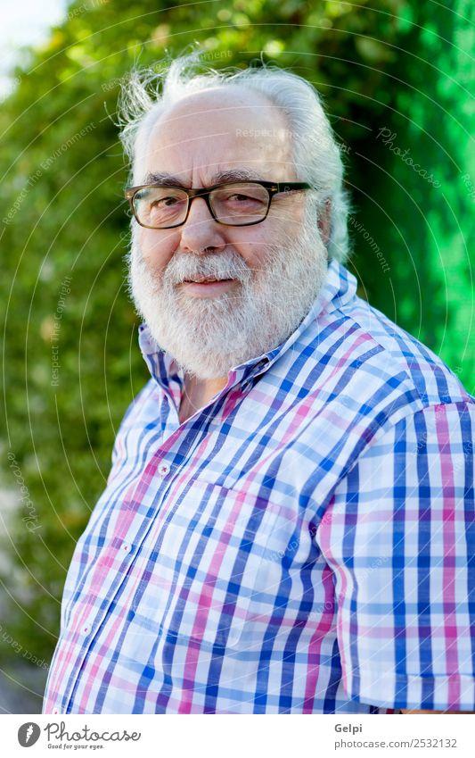 Porträt eines älteren Mannes mit weißem Bart auf der Straße Lifestyle Glück Gesicht ruhig Freizeit & Hobby Sommer Garten Ruhestand Mensch Erwachsene Großvater