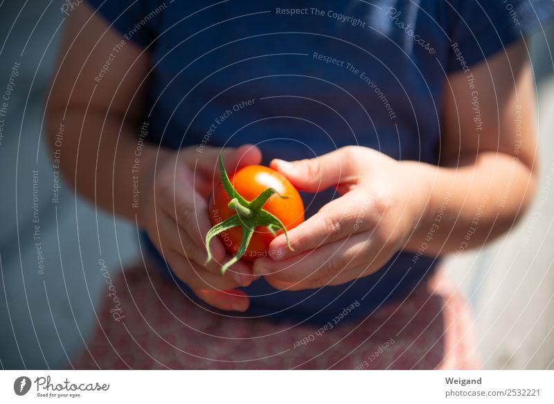 Tomatenkind I Lebensmittel Gemüse Italienische Küche Kleinkind Kindheit 1 Mensch 1-3 Jahre 3-8 Jahre Sommer Freundlichkeit Fröhlichkeit frisch Gesundheit Glück