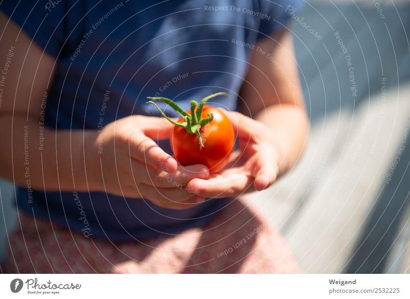 Tomatenkind III Lebensmittel Gemüse Ernährung Essen Abendessen Bioprodukte Vegetarische Ernährung Slowfood Kindergarten Kleinkind 1 Mensch 1-3 Jahre 3-8 Jahre