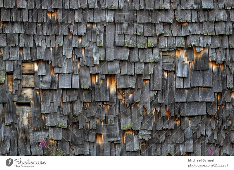 Alte Hauswand in Tirol Tannheimer Tal Bundesland Tirol Österreich Europa Hütte Fassade alt Armut dunkel kaputt natürlich trist braun schwarz Senior Verfall