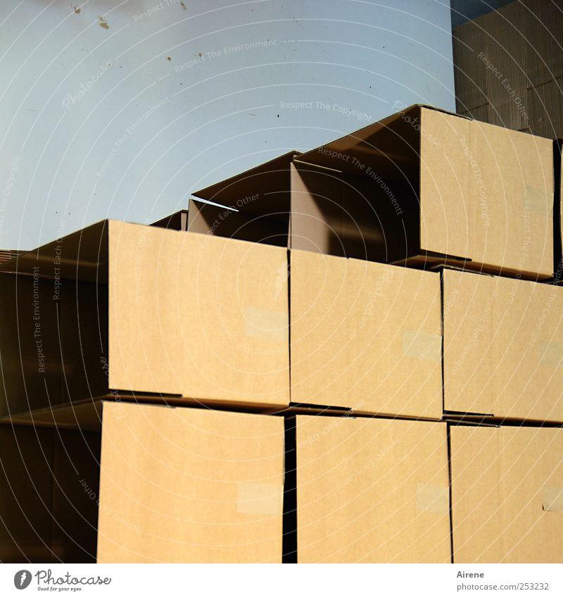inhaltslos Umzug (Wohnungswechsel) Handel Güterverkehr & Logistik Dienstleistungsgewerbe Menschenleer Lagerplatz Lagerhalle Verpackung Paket Kasten neu blau