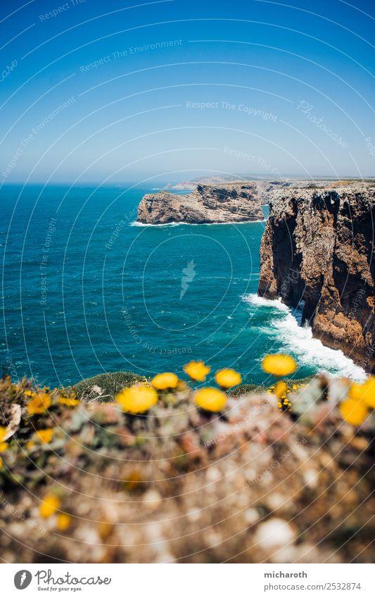 Blick über die Kllppen Ausflug Abenteuer Ferne Freiheit Sommer Sommerurlaub Strand Meer Wellen Umwelt Natur Landschaft Erde Wasser Schönes Wetter Pflanze Felsen